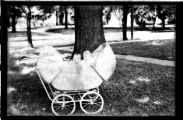 <h5>Babies in carriage</h5>